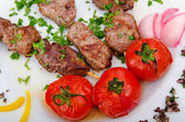 Meat kebab served in plate — Stock Photo