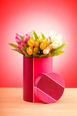 Giftbox and tulips against gradient background — Stock Photo
