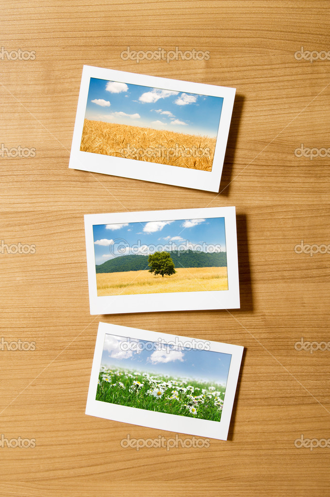 Picture frames with nature photos — Stock Photo #6843132