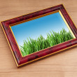 Green grass on the photo frame — Stock Photo #6896742