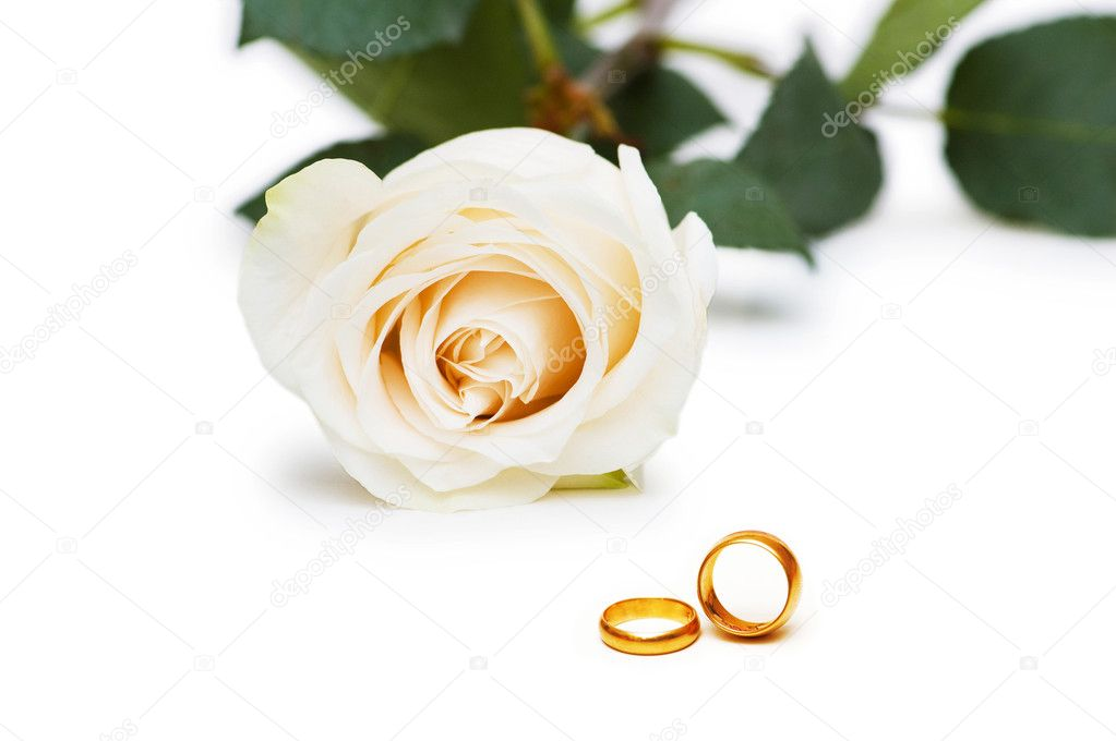 Wedding concept with roses and rings — Stock Photo #7107855