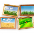 Nature photos in picture frames — Stock Photo #7130566