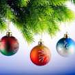 Baubles on christmas tree in celebration concept - 
