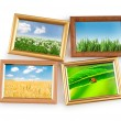 Nature photos in picture frames — Stock Photo #7134002