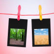 Picture frames with nature photos — Stock Photo