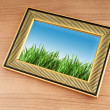 Green grass on the photo frame — Stock Photo #7138285
