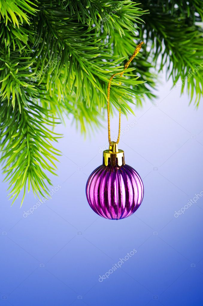 Baubles on christmas tree in celebration concept  Stock Photo #7135580