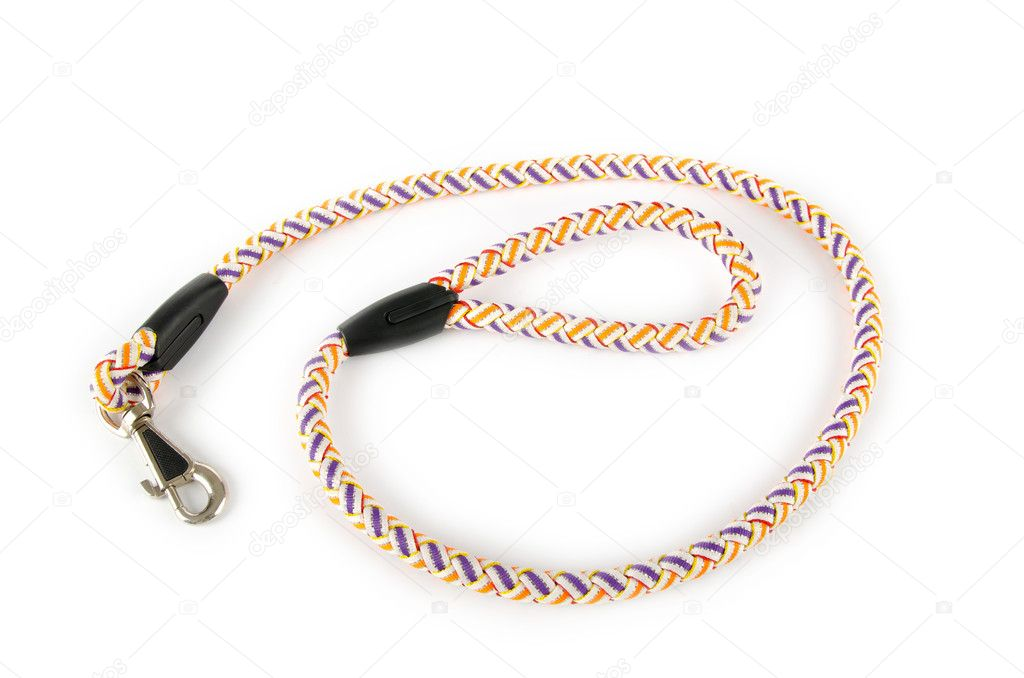 Dog collar isolated on the white background — Stock Photo #7137687