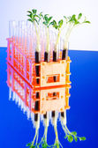 緑の苗を実験ラボ — ストック写真