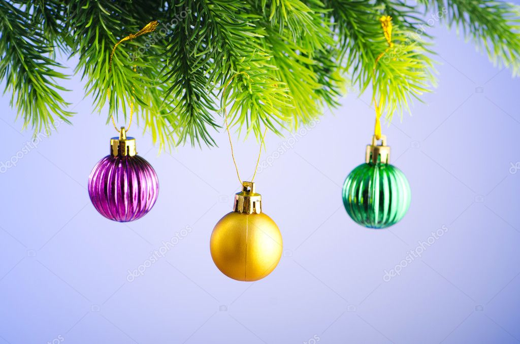 Baubles on christmas tree in celebration concept  Stock Photo #7374635
