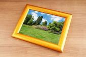 Bosque en los marcos de foto — Foto de Stock