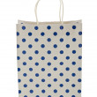 Shopping bag isolated on the white — Stock Photo #7899336