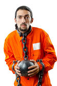 Convict with handcuffs on white — Stock Photo