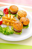 Burgers with french fries in plate — Stock Photo
