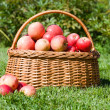 Basket with red apples costs — Stock Photo