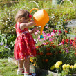 Girl watering flower beds — Stock Photo #7870529