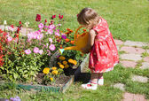 Girl watering flower beds — Stok fotoğraf