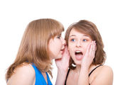 Two girlfriends talk. Close up. White background. It is isolated — Stock Photo