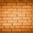 Brick wall — Stock Photo #6825674