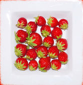 Strawberry — Stock fotografie