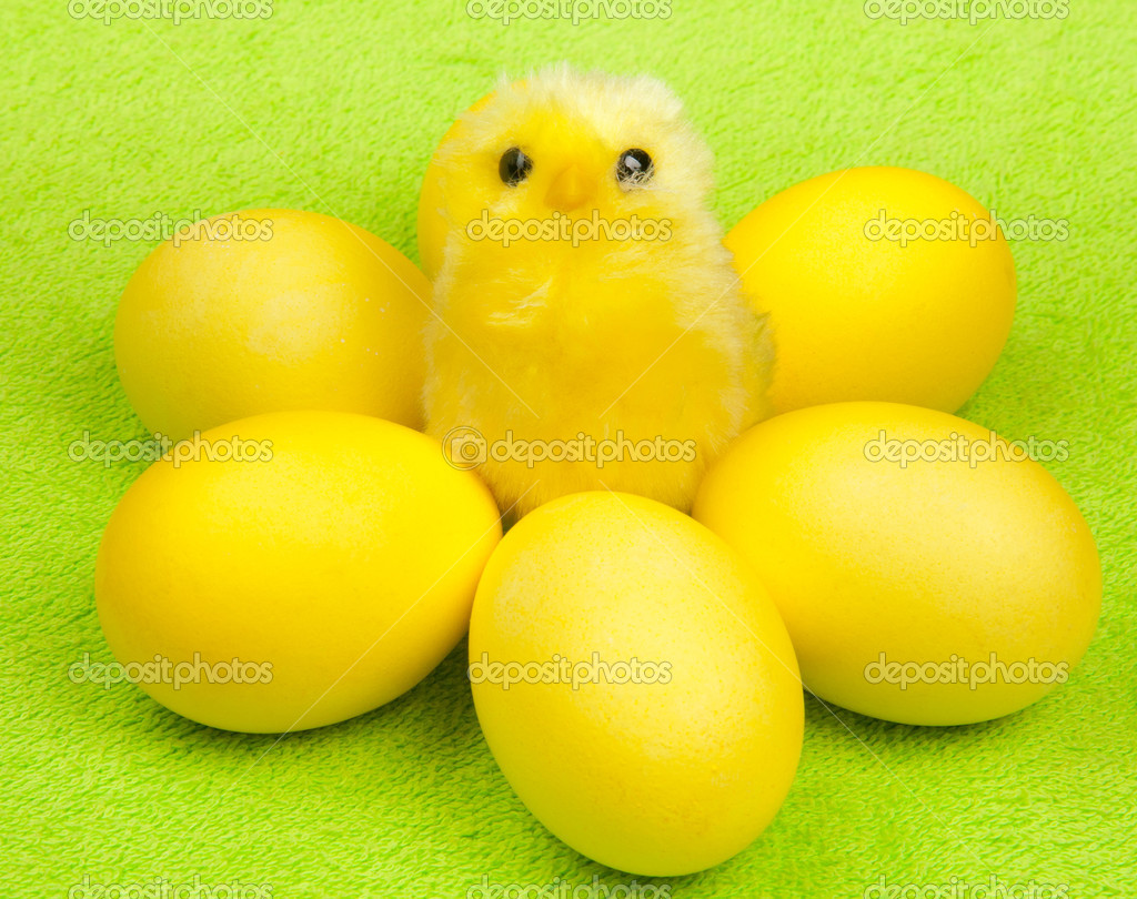 Yellow chicken with yellow eggs — Stock Photo #6826172