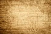старое дерево — Стоковое фото