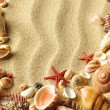 Sea shell on sand — Stock Photo #7542723
