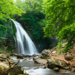 Natural Spring Waterfall — Stock Photo #7542783
