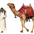 Bedouin on camel - Stock Photo