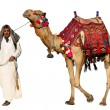 Bedouin on camel - Stock fotografie