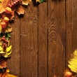Autumn background with colored leaves — Stock Photo #7543727