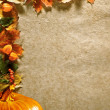 Autumn background with colored leaves on wooden board — Stock Photo #7543780