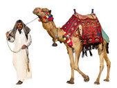 贝都因人在骆驼上 — 图库照片
