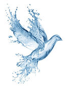 Dove made out of water splashes — Stockfoto