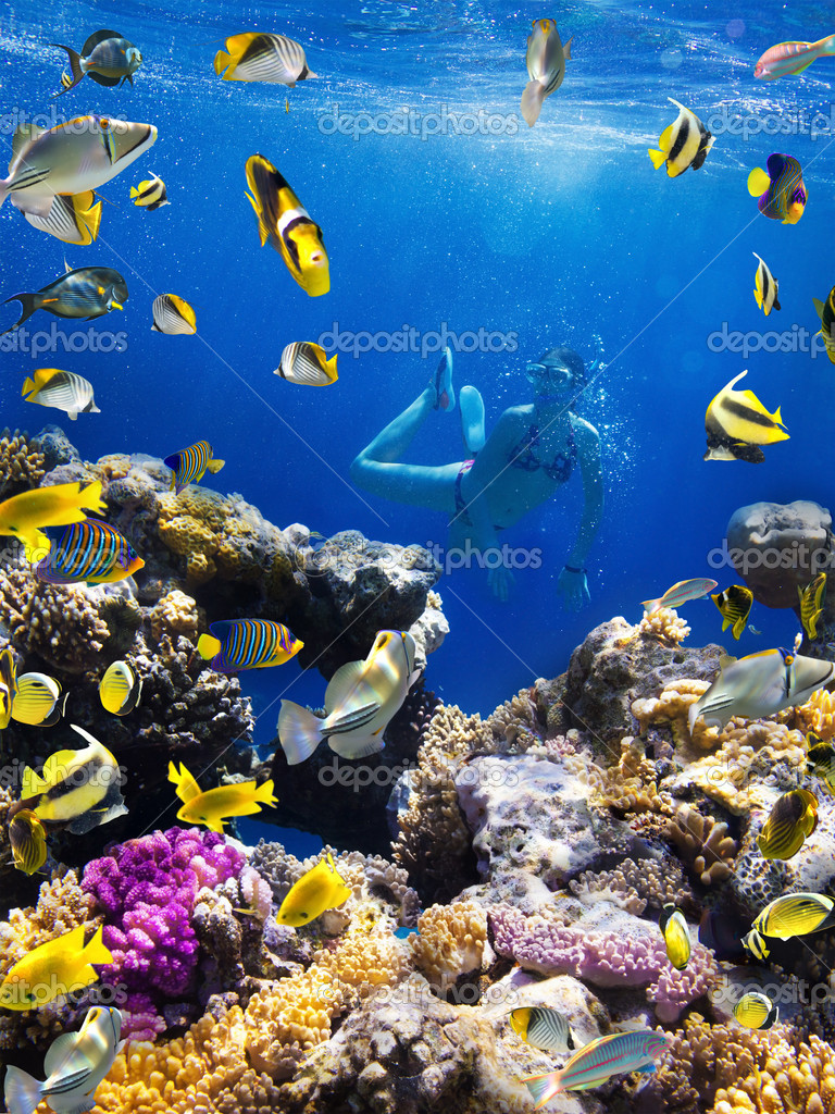 Фотообои Колония кораллов, коралловых рыб и молодых женщин