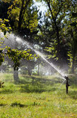 Automatic watering of plants and trees — Stock Photo