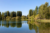 Freshwater lake with reflection of trees and sky — Stock Photo