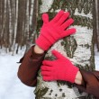 Hands in red gloves embrace birch — Stock Photo