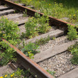 Forgotten railway — Stock Photo