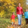 Mother with children on walk in wood — Stock Photo #7425546