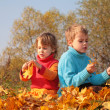 Two children sit on fallen maple leaves - Stock Photo