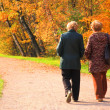 Two elderly women in park in autumn — Stock Photo #7425648
