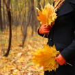 Female hands in red gloves with yellow leaves — Stock Photo #7425895