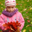 Girl with a bunch of leaves — Stock Photo