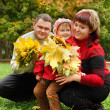 Married couple and little girl collect maple leaves In park in a — Stock Photo