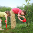 Stock Photo: Boy and girl pour on planted tree