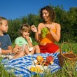 Stock Photo: Pretty Little Girl and Young Women and Little Boy on picnic in g