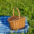 Stock Photo: Basket on glade