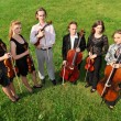 Stock Photo: Six violinists stand semicircle on grass