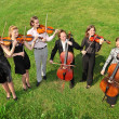 Stock Photo: Six violinists stand semicircle on grass and play